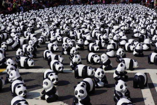 Pandas on parade in Taipei.