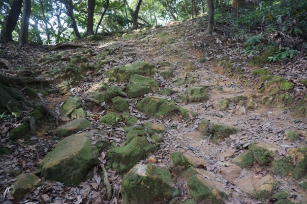 The trails range from recently paved to all-out nature.