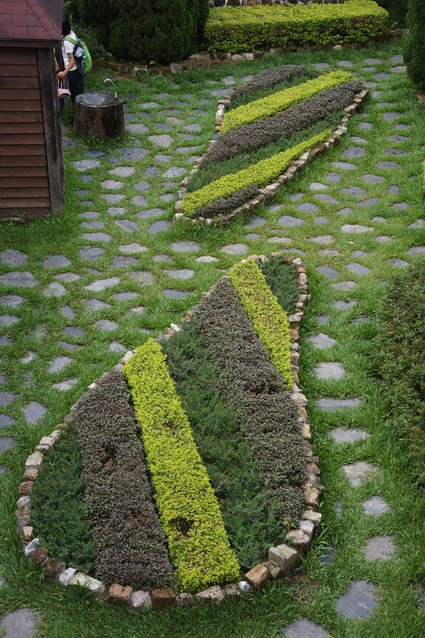 Some nice landscaping.  Are these supposed to be pears?